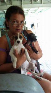 Cute Dominica Dogs 2